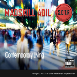 MadSkill Adil Releases New Album for 2012